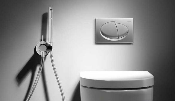 Гигиенический душ для туалета.