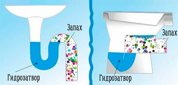 Влияние гидрозатвора на поступление запахов.